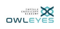 Owl Eyes Academy